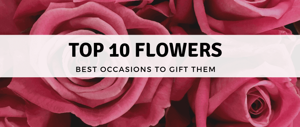 Top 10 Flowers and The Best Occasions to Gift Them