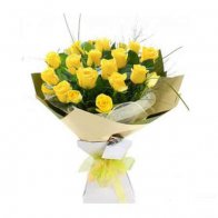 Yellow Roses Beauty