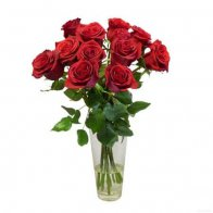 <ins>Rs.699</ins> <del>Rs.799</del><br><small>10 Red Roses</small>