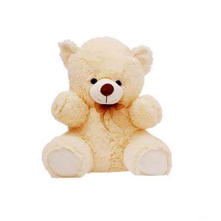 Cute Little Teddy