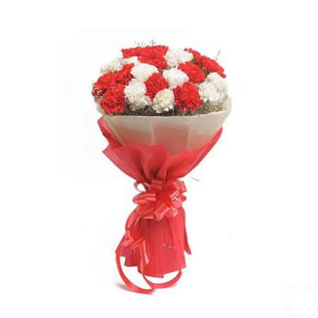 Red & White Carnations