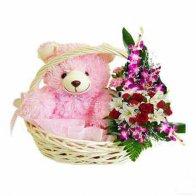 Teddy N Orchids