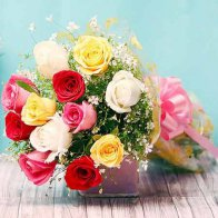 Mixed Beauty Roses