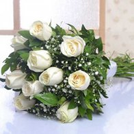 White Roses Beauty