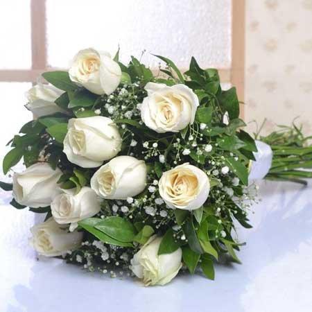 White Roses Beauty
