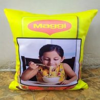 Maggi Fan Cushion