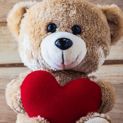 Teddy Day - 10 Feb